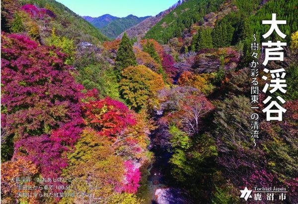 大芦渓谷-pdf-1024x727